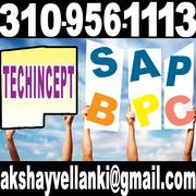 SAP BPC ONLINE TRAINING BPC ONLINE TRAINING SAP ONLINE TRAINING