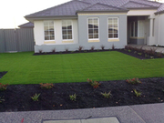 synthetic turf fake grass wholesale & installation111