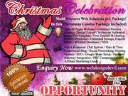 Christmas Offer Multi Features Web Solutions in 1 Package!