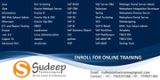 Sap ABAP  Online Training From India