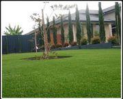 Fake grass Sydney