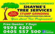 Shayne's Tree Services