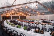 Elegant Chair Events