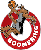 Boomering Inc.